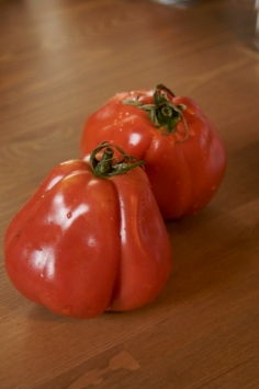 Tomates italianos
