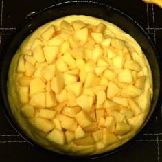 Cubra com a 1a. camada de maçãs