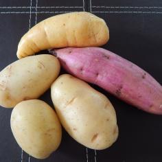 Batatas inglesa, baroa e doce