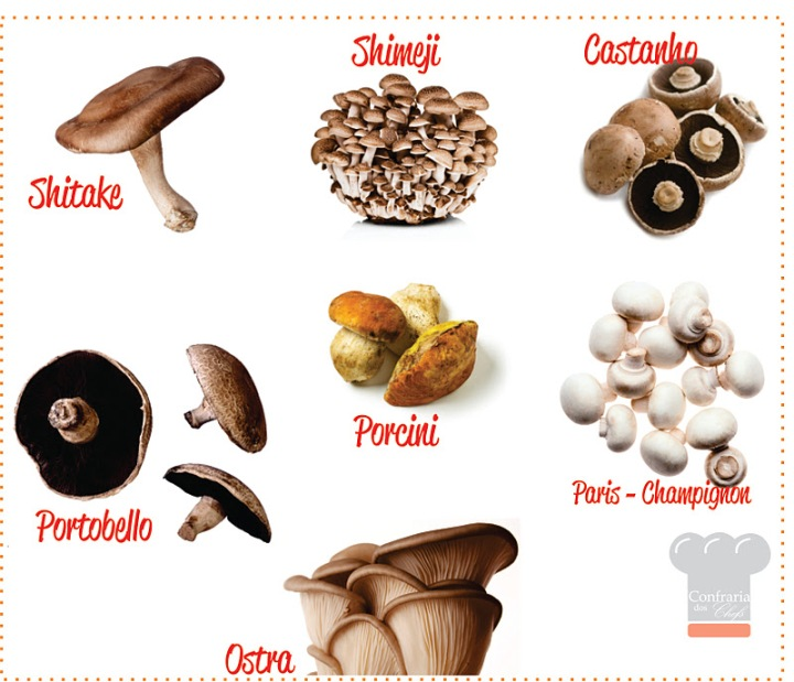 Cogumelos- confraria dos chefs
