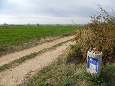 Caminho de Compostela