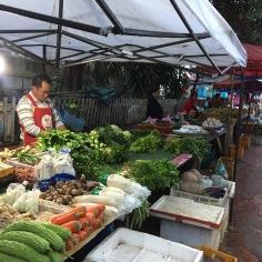 Variedade de legumes e verduras