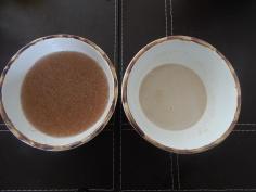 Geleia de psyllium e fermento com açúcarr